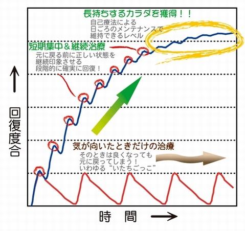 体の回復グラフ.jpg