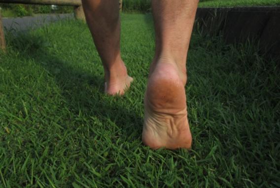 足底筋膜1.jpg